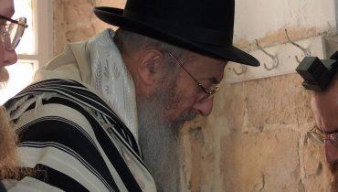 הרב צבי ישראל טאו. צלם: מיכאל יעקובסון