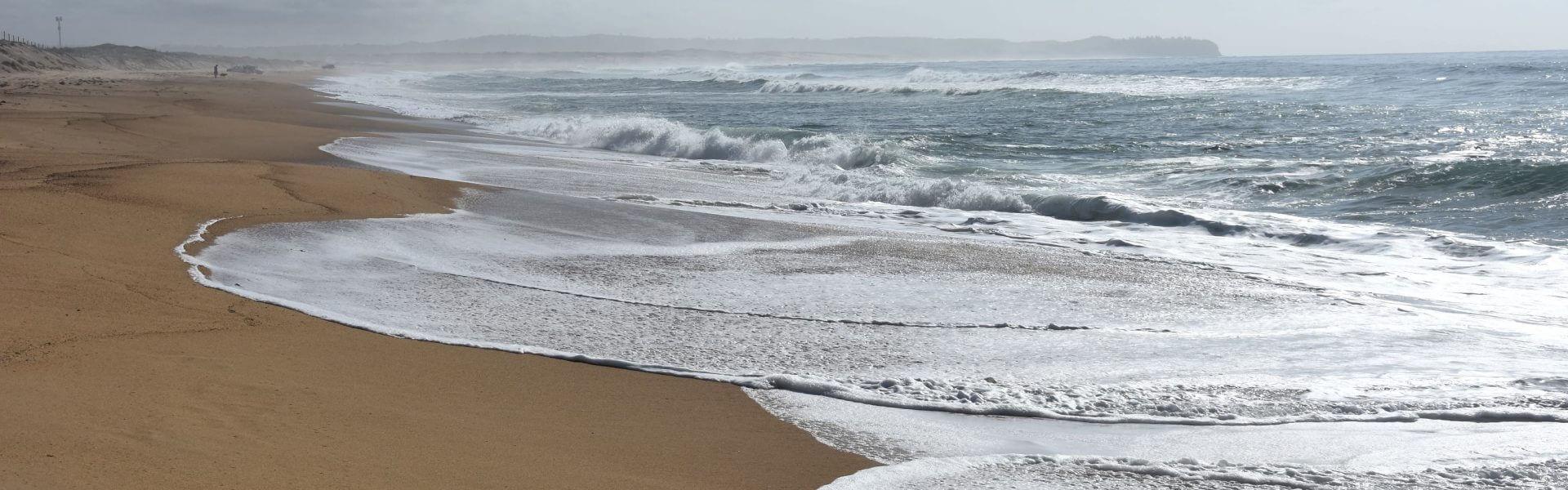 חוף ים. קרדיט תמונה ראשית: Bigstock