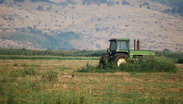 חקלאות בעמק החולה, מתוך Flickr, צילום: chadika, cc 2.0
