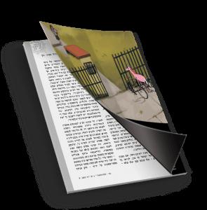 כריכת ספר_השילוח 26